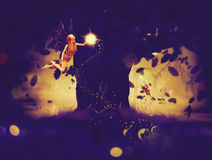 Night Fairy Royalty Free Stock Images