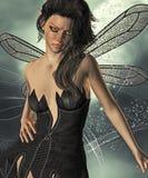 Night fairy Stock Photo