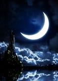 Night fairy-tale. Fantasy landscape with castle vector illustration