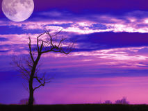 Night fall. A tree with the moon in the background made in photoshop vector illustration