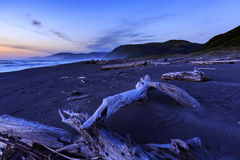 Free Night Falls On Driftwood Cluttering A Lost Coast Beach In California Stock Images - 98745854