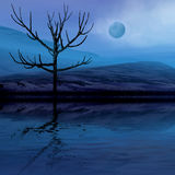 Night fantasy scenery. 3 d graphics night fantasy landscape with lonely tree Royalty Free Stock Image