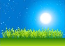 Night field. Green grass on night field, vector illustration Royalty Free Stock Images