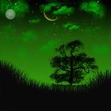 Night field. Green Night field Stock Photo