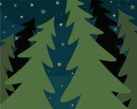 Night fir forest. Vector flat illustration Royalty Free Stock Photos