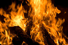 Night fire. Brightly flaring fire wood at night for a background Royalty Free Stock Images
