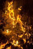 Night fire Stock Photo