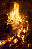Night fire Stock Images