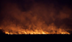 Night fire in a field Royalty Free Stock Image