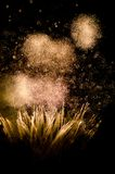 Fireworks. Night of Fire in Valencia Stock Photos