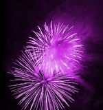 Night firework. Great firework on night sky - celebration of an event Royalty Free Stock Photography