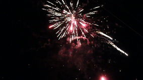 Night fireworks in the sky for a holiday stock video footage