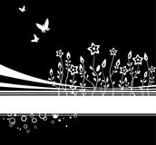 Night flowers. White flowers and butterflies on a black background with strips Royalty Free Stock Images
