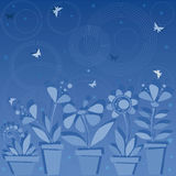 Night flowers. Dark blue background with flowers in pots Stock Photos