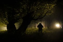 Night fog in the village. Mysterious. Lighting up Swing near the tree in the yard. The light from the backside of trees. Mystic ni. Night fog in the village Royalty Free Stock Photos