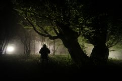 Night fog in the village. Mysterious. Lighting up Swing near the tree in the yard. The light from the backside of trees. Mystic ni. Night fog in the village Stock Image