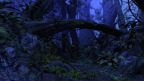 Night forest. 3D rendered illustration of night deep forest Stock Photos