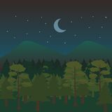 Night Forest Landscape Stock Photo