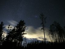 Night sky stars and clouds over forest Vega star Lyra constellation Stock Photos