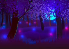 Night forest under a full Moon. Vector Illustration. Night forest under a full Moon Stock Photography