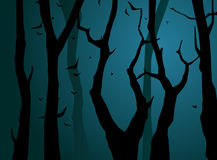 Night forest. Vector Royalty Free Stock Photography