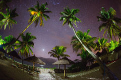Night with full of stars and palm trees on a beach of Zanzibar Stock Image