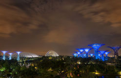 Night garden by the bay at Singapore Royalty Free Stock Photo