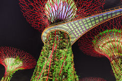 Night Of Gardens By The Bay Royalty Free Stock Photos