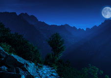 Night in High Tatras Royalty Free Stock Photo