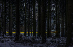 Night Highway through forest Stock Photography