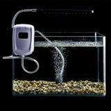 Night illuminated glass aquarium with lamp and air bubbles Stock Photo