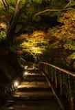 Night illumination of autumn Japanese garden Royalty Free Stock Image