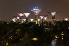 Night illumination in Gardens by the Bay, Singapore Stock Photo