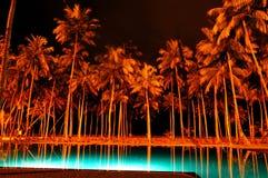Free Night Illumination Of Swimming Pool And Palms Royalty Free Stock Image - 26954176