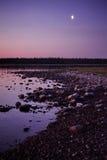 Night on the island of terns. White night on the Solovetsky Islands, the island of terns Stock Photo