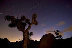 Night in Joshua Tree National Park Stock Image