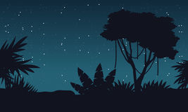 At night jungle with tree silhouette landscape Royalty Free Stock Photos