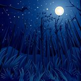 Night Jungle Royalty Free Stock Images