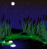 Night lake. Moonlit night, a lake with reeds and water lilies Royalty Free Stock Photo