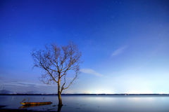 Night lake Stock Images