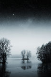 Night lake forest . Royalty Free Stock Photography