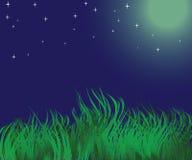 NIGHT landscape. Quiet, dark night with stars Stock Image