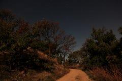 Night landscape Royalty Free Stock Photos