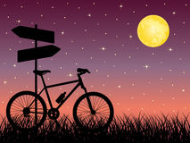 Night landscape with a bike. Vector illustration Royalty Free Stock Photography