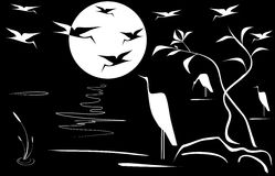 Night landscape. With a bird Royalty Free Stock Photos