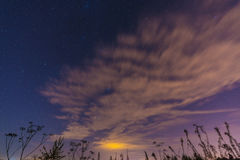 Night landscape with herbs, stars and clouds. Night landscape with field herbs, stars and clouds Stock Photo