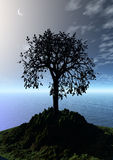 Night landscape with lonely tree. 3 d graphics fantasy landscape with lonely tree and moon Stock Photos