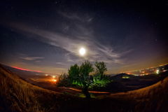 Night landscape with the Milky Way above the fields Royalty Free Stock Image