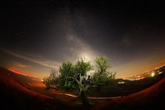 Night landscape with the Milky Way above the fields Royalty Free Stock Photos