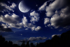 Night landscape with the moon Stock Image